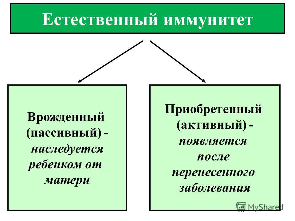 Врожденный (пассивный) - наследуется ребенком от матери Приобретенный (активный) - появляется после перенесенного заболевания Естественный иммунитет