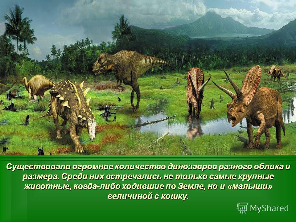 Существовало огромное количество динозавров разного облика и размера. Среди них встречались не только самые крупные животные, когда-либо ходившие по Земле, но и «малыши» величиной с кошку.