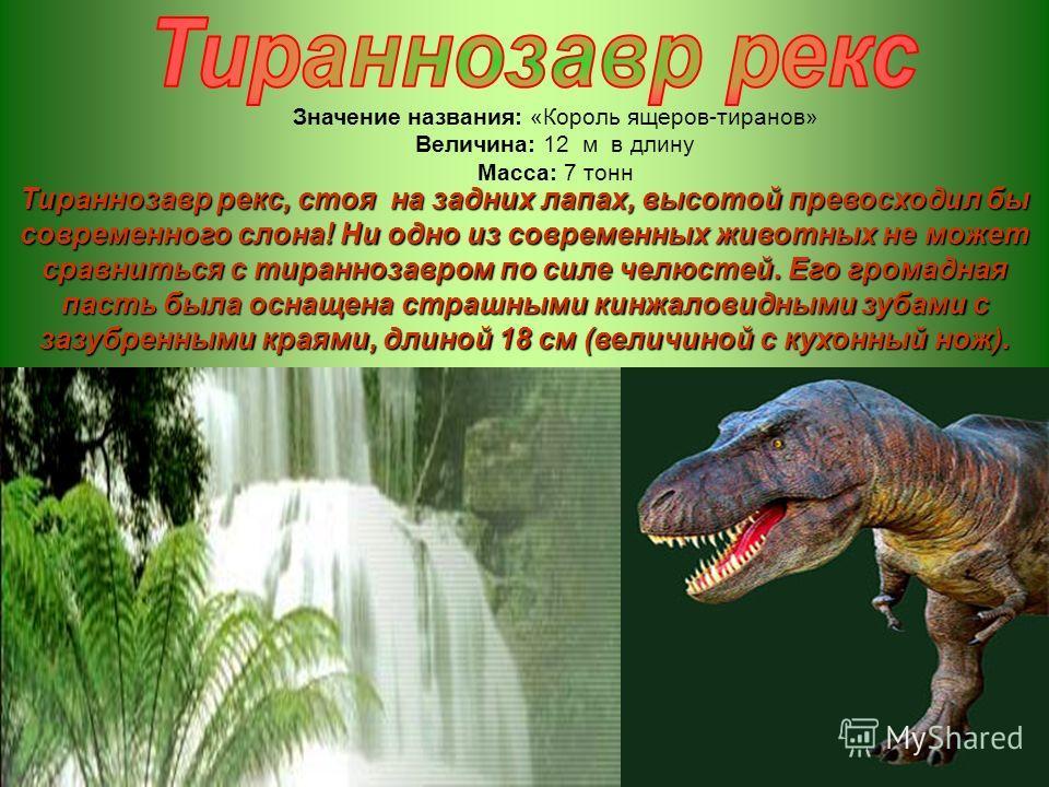 Значение названия: «Король ящеров-тиранов» Величина: 12 м в длину Масса: 7 тонн Тираннозавр рекс, стоя на задних лапах, высотой превосходил бы современного слона! Ни одно из современных животных не может сравниться с тираннозавром по силе челюстей. Е