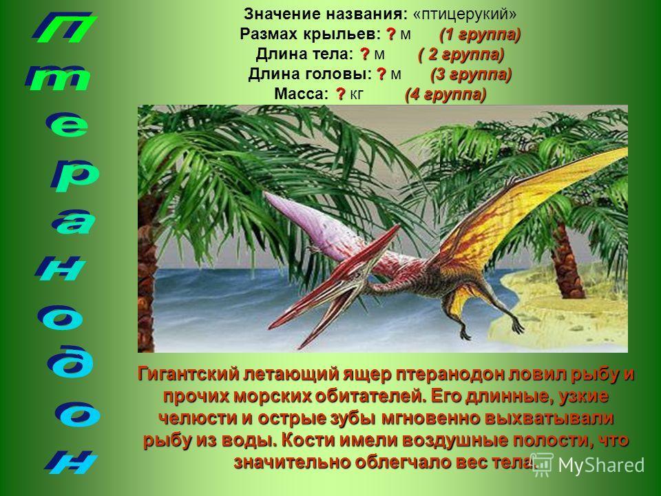 Гигантский летающий ящер птеранодон ловил рыбу и прочих морских обитателей. Его длинные, узкие челюсти и острые зубы мгновенно выхватывали рыбу из воды. Кости имели воздушные полости, что значительно облегчало вес тела. Значение названия: «птицерукий