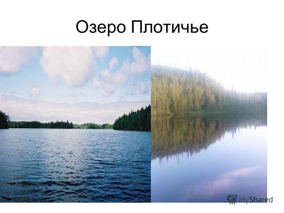 Озеро Плотичье