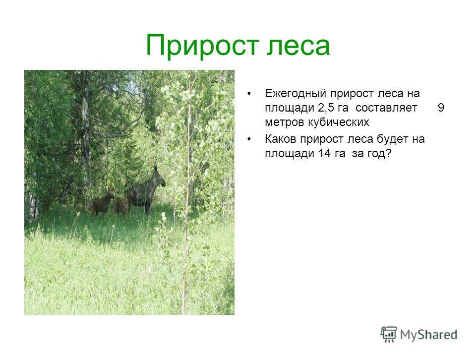 Прирост леса Ежегодный прирост леса на площади 2,5 га составляет 9 метров кубических Каков прирост леса будет на площади 14 га за год?