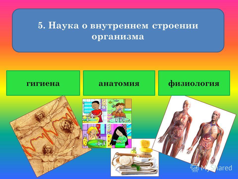 5. Наука о внутреннем строении организма гигиенаанатомияфизиология