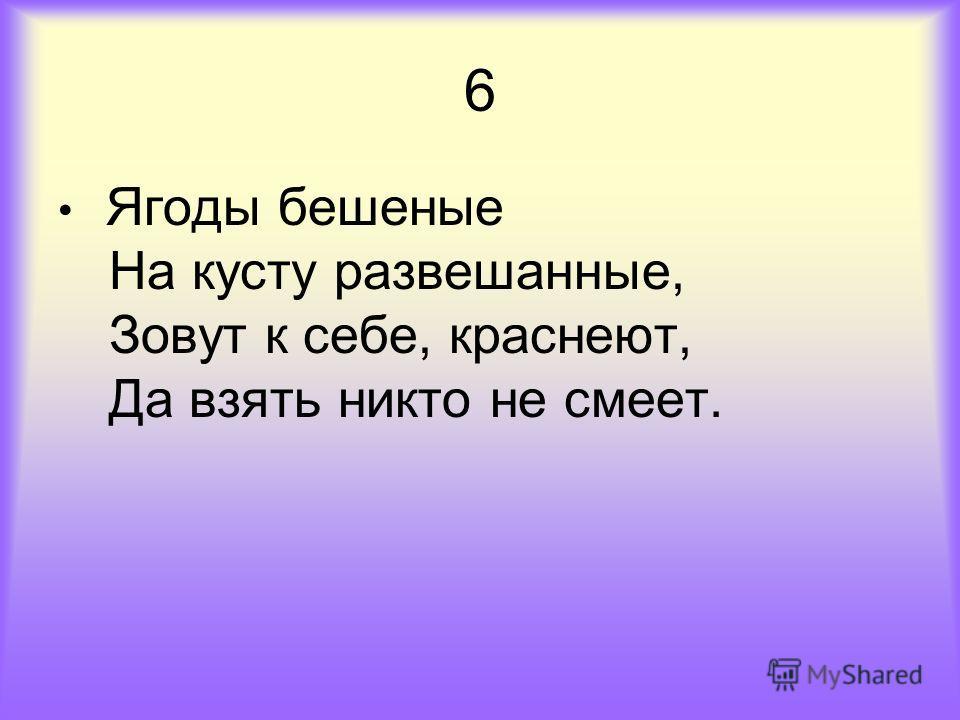 6 Ягоды бешеные На кусту развешанные, Зовут к себе, краснеют, Да взять никто не смеет.