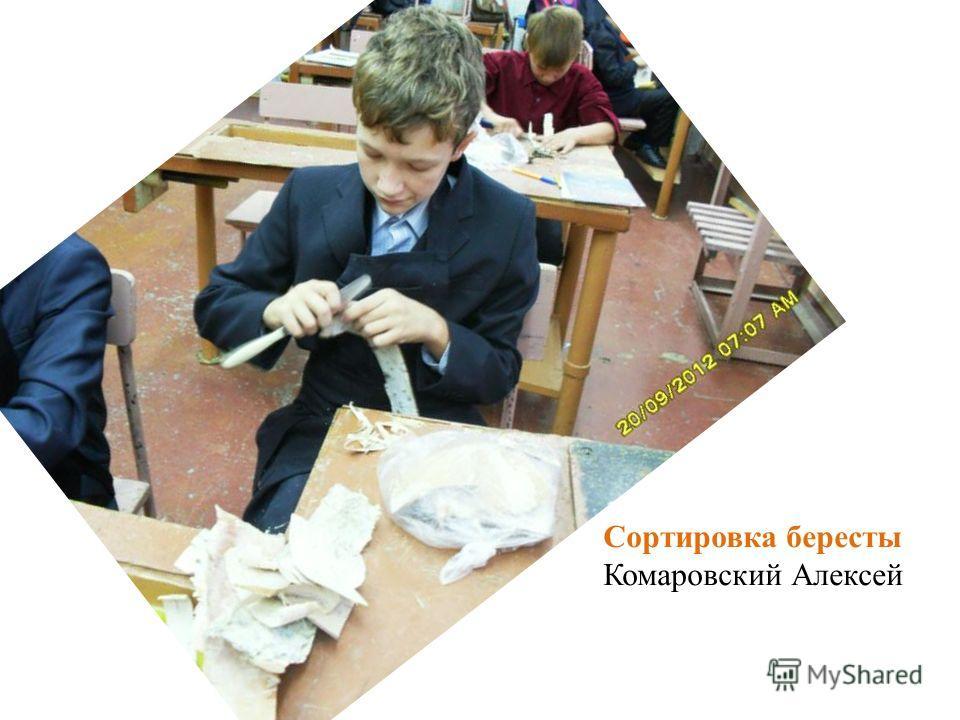 Сортировка бересты Комаровский Алексей