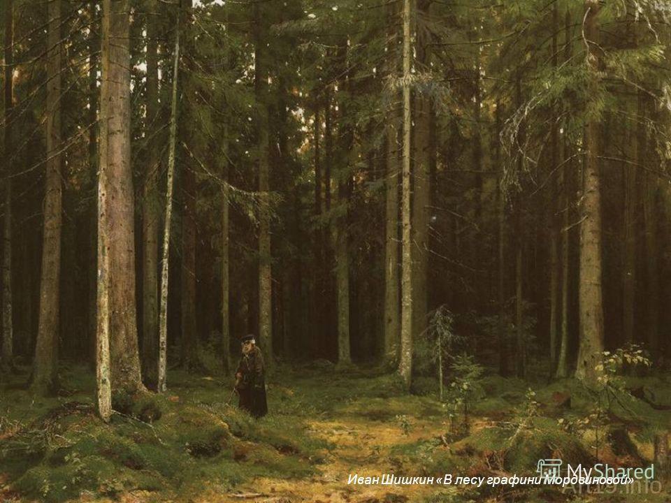 Иван Шишкин «В лесу графини Мордвиновой»