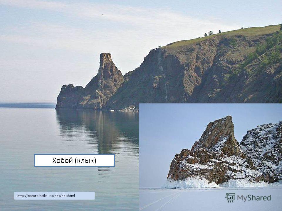 Хобой (клык) http://nature.baikal.ru/phs/ph.shtml