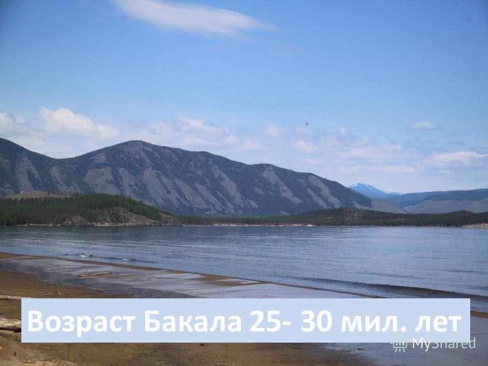 Возраст Бакала 25- 30 мил. лет