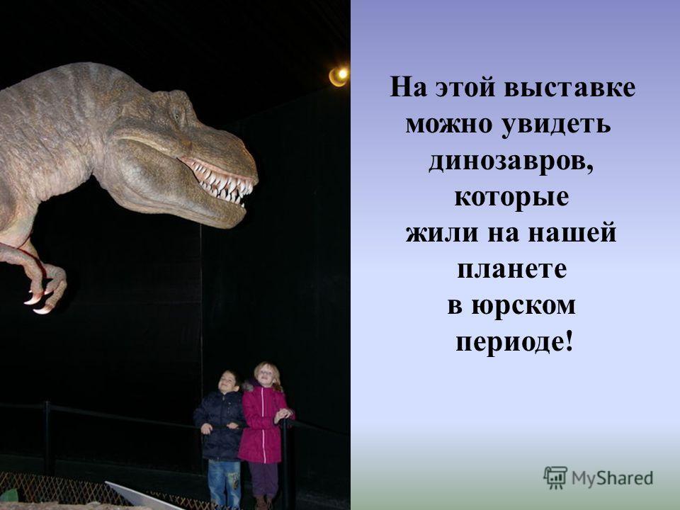 На этой выставке можно увидеть динозавров, которые жили на нашей планете в юрском периоде!