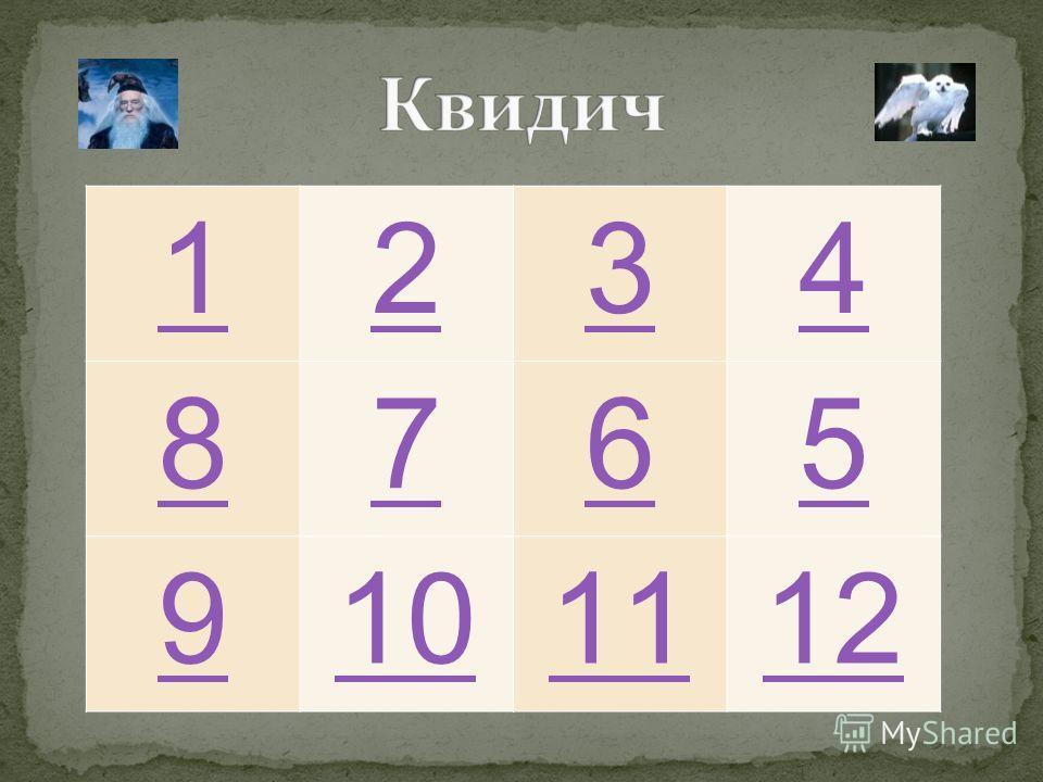 1234 8765 9101112
