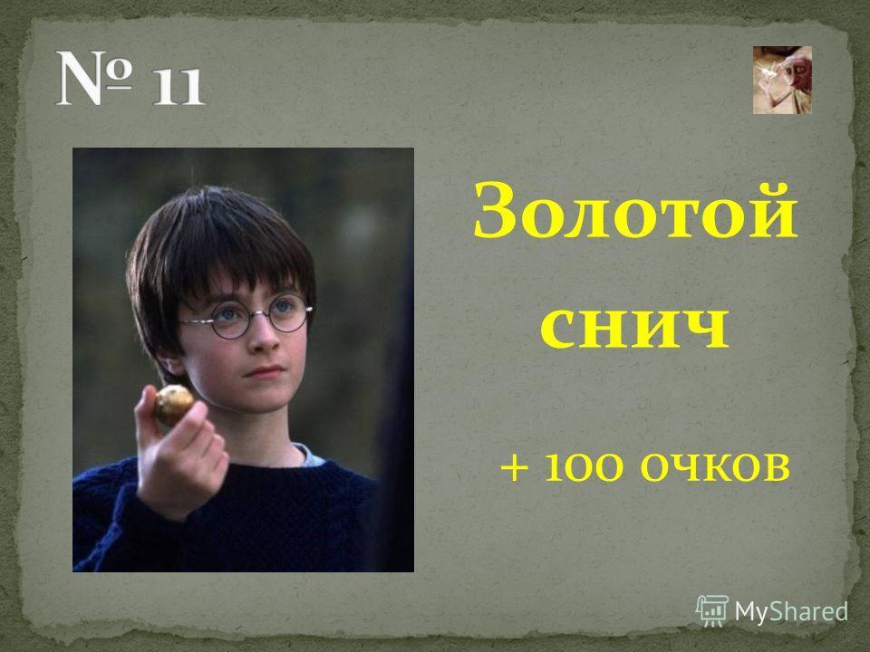 Золотой снич + 100 очков