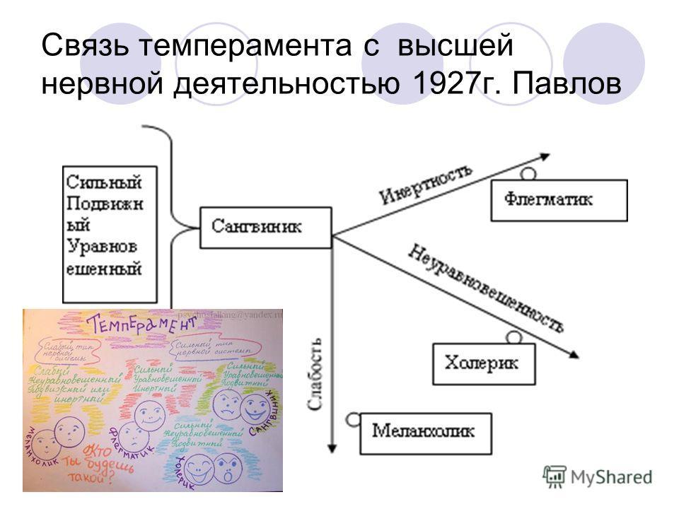Связь темперамента с высшей нервной деятельностью 1927г. Павлов
