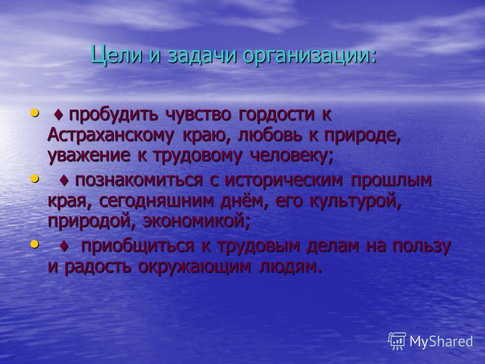 Ц ели и задачи организации: Ц ели и задачи организации: пробудить чувство гордости к Астраханскому краю, любовь к природе, уважение к трудовому человеку; пробудить чувство гордости к Астраханскому краю, любовь к природе, уважение к трудовому человеку