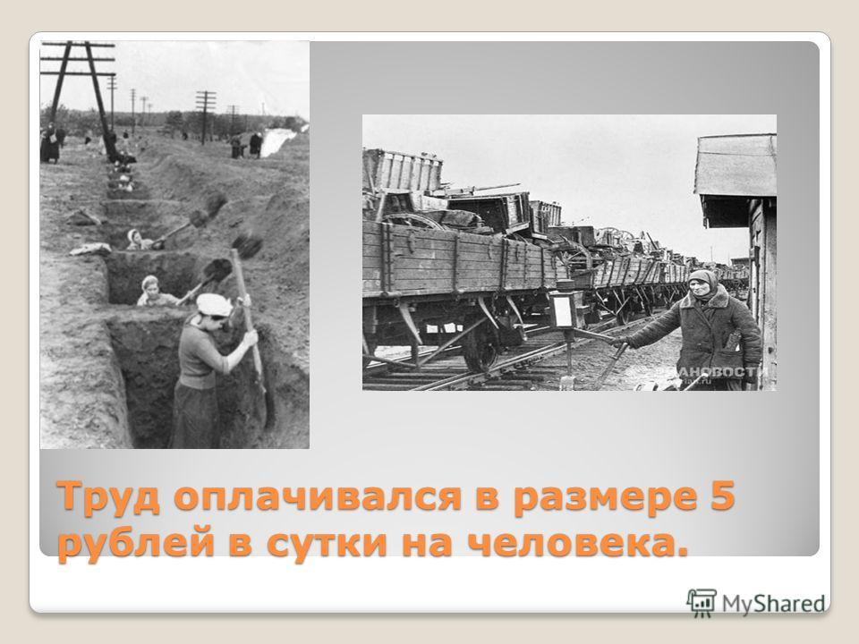 Труд оплачивался в размере 5 рублей в сутки на человека.