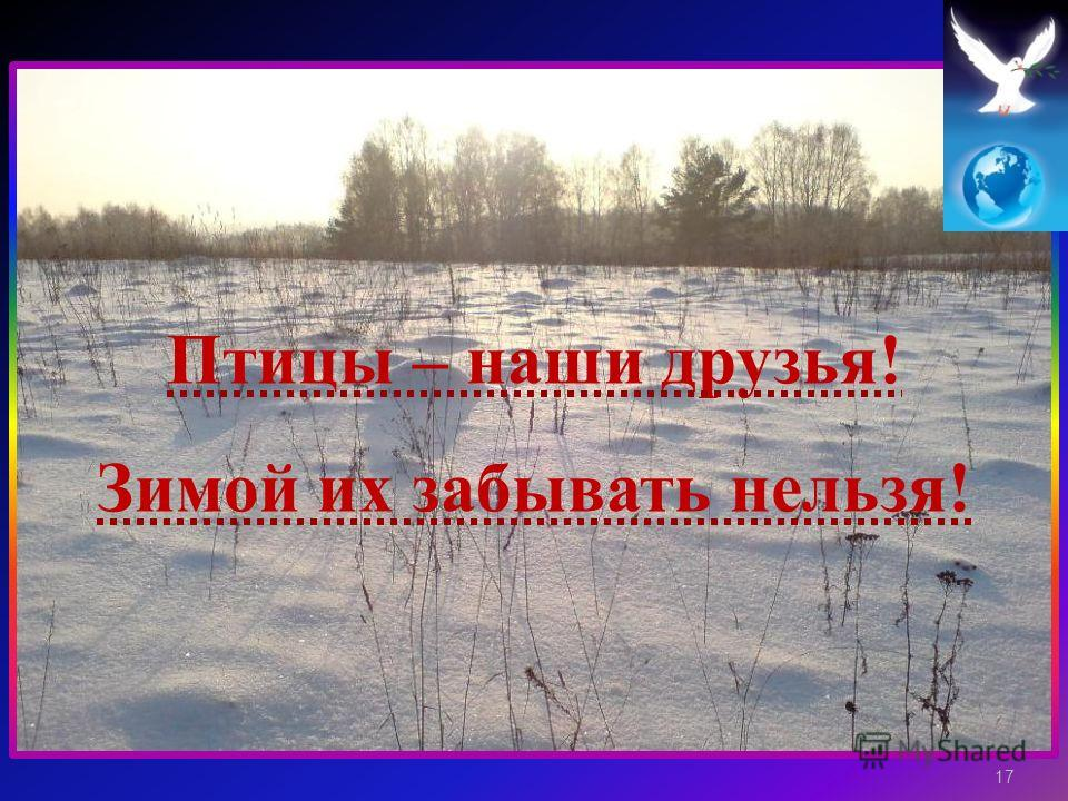 Птицы – н аши д рузья ! Зимой и х з абывать н ельзя ! 17