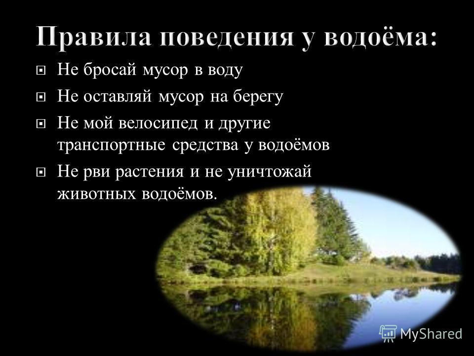 Не бросай мусор в воду Не оставляй мусор на берегу Не мой велосипед и другие транспортные средства у водоёмов Не рви растения и не уничтожай животных водоёмов.