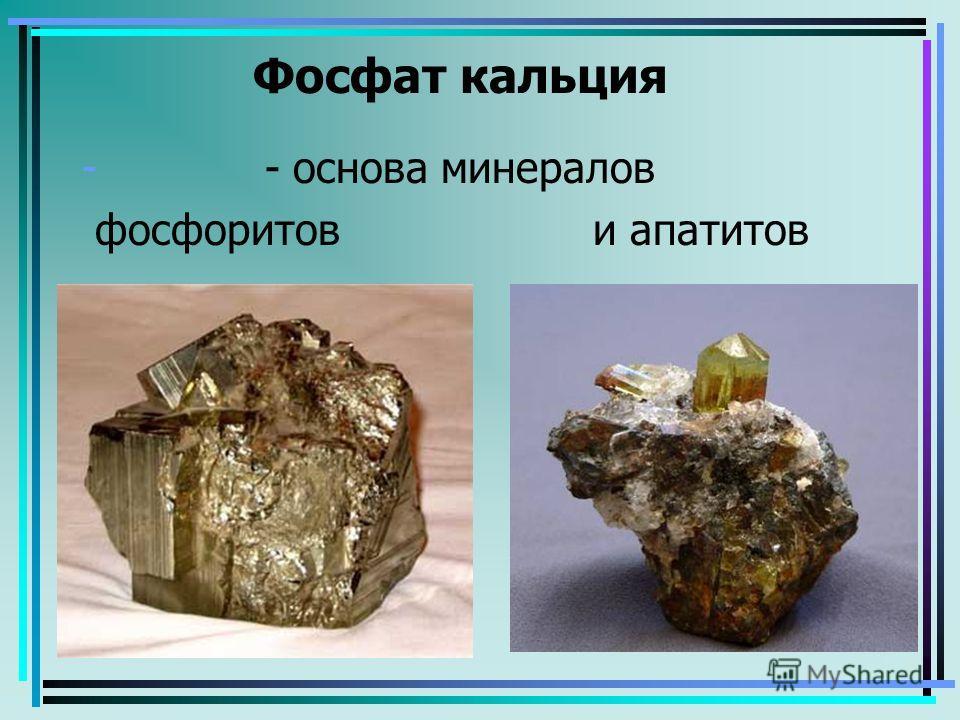 Фосфат кальция - - основа минералов фосфоритов и апатитов