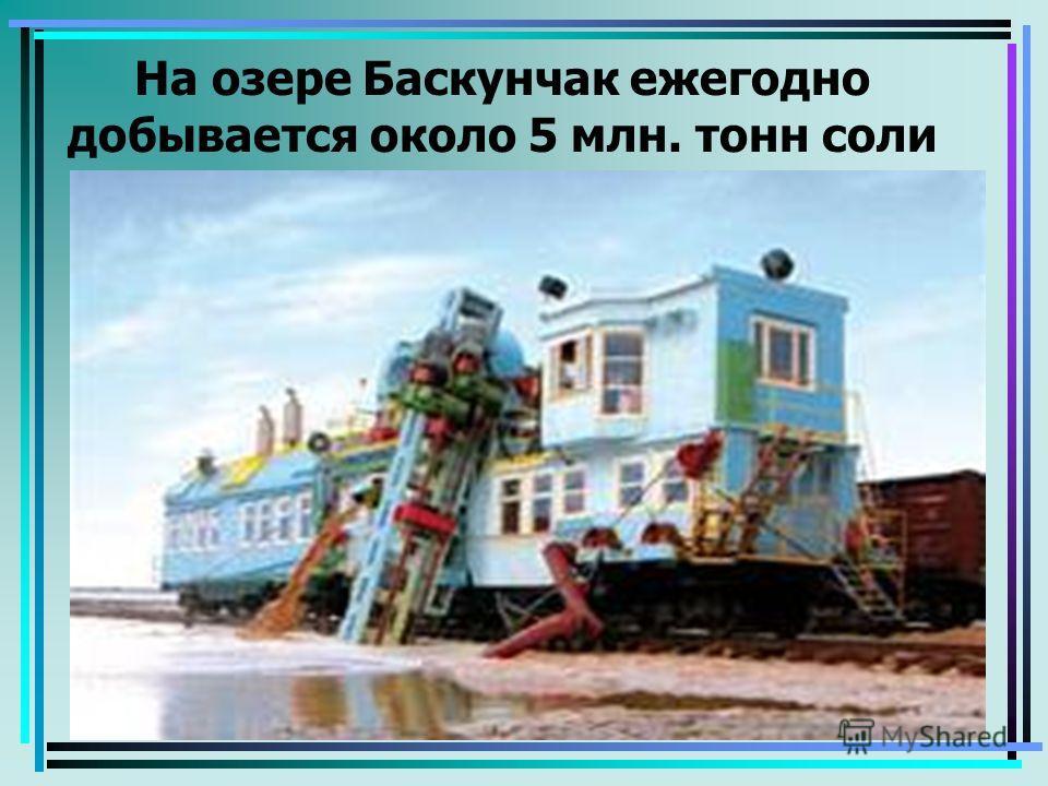 На озере Баскунчак ежегодно добывается около 5 млн. тонн соли