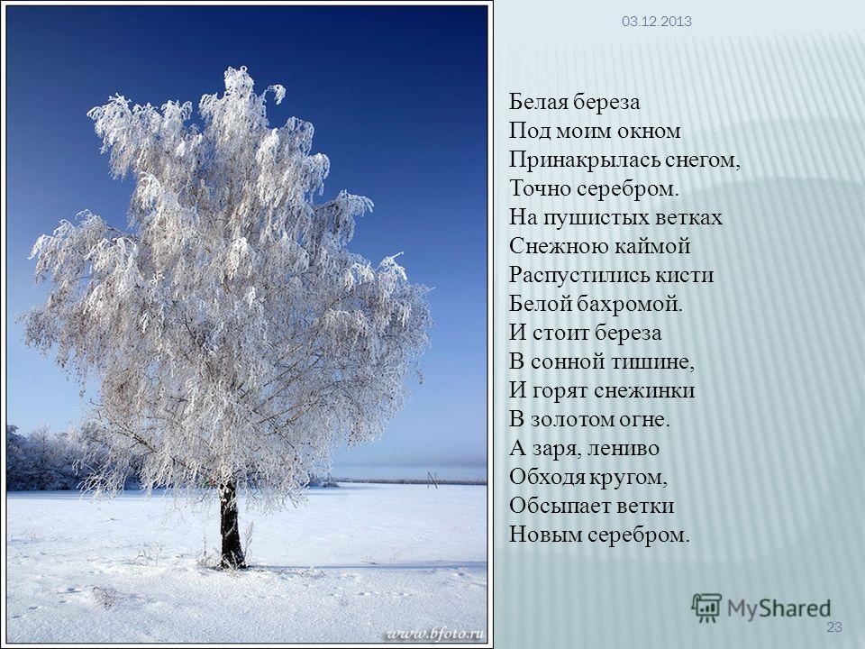 Белая береза Под моим окном Принакрылась снегом, Точно серебром. На пушистых ветках Снежною каймой Распустились кисти Белой бахромой. И стоит береза В сонной тишине, И горят снежинки В золотом огне. А заря, лениво Обходя кругом, Обсыпает ветки Новым