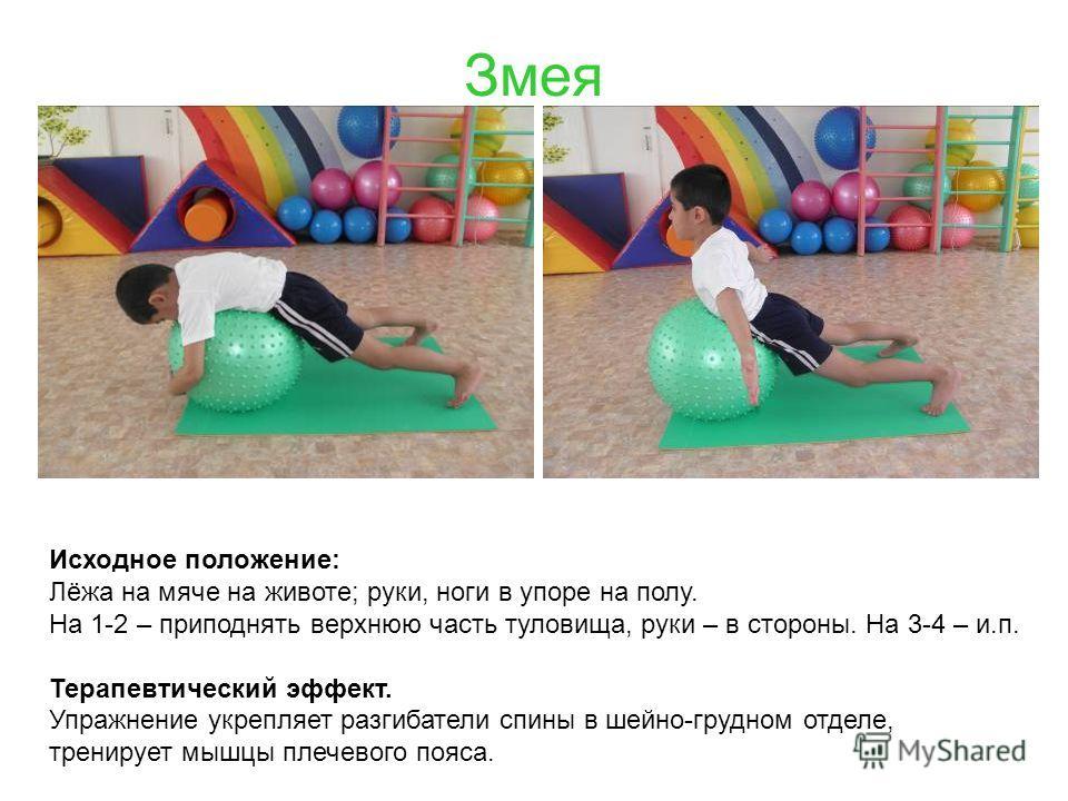 Змея Исходное положение: Лёжа на мяче на животе; руки, ноги в упоре на полу. На 1-2 – приподнять верхнюю часть туловища, руки – в стороны. На 3-4 – и.п. Терапевтический эффект. Упражнение укрепляет разгибатели спины в шейно-грудном отделе, тренирует