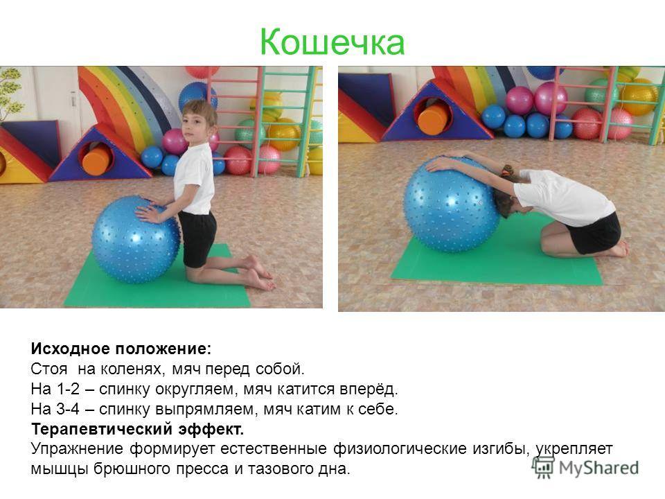 Кошечка Исходное положение: Стоя на коленях, мяч перед собой. На 1-2 – спинку округляем, мяч катится вперёд. На 3-4 – спинку выпрямляем, мяч катим к себе. Терапевтический эффект. Упражнение формирует естественные физиологические изгибы, укрепляет мыш