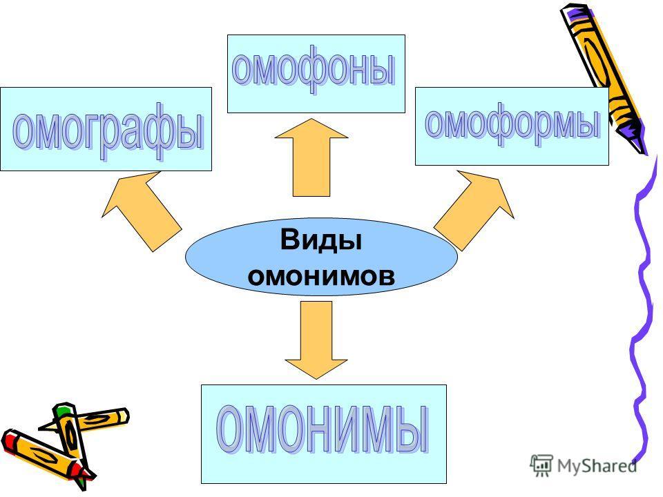 Виды омонимов