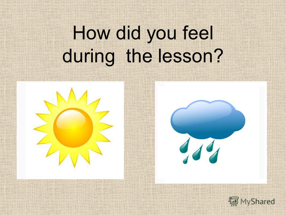 How did you feel during the lesson?