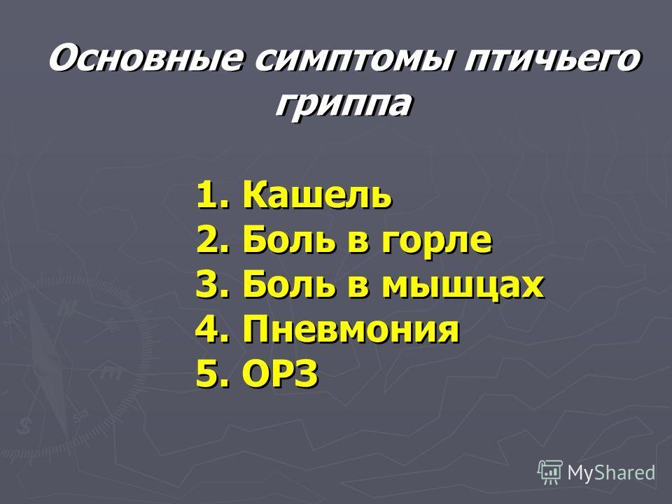 Основные симптомы птичьего гриппа 1. Кашель 2. Боль в горле 3. Боль в мышцах 4. Пневмония 5. ОРЗ 1. Кашель 2. Боль в горле 3. Боль в мышцах 4. Пневмония 5. ОРЗ