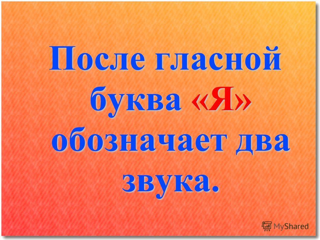 После гласной буква «Я» обозначает два звука.