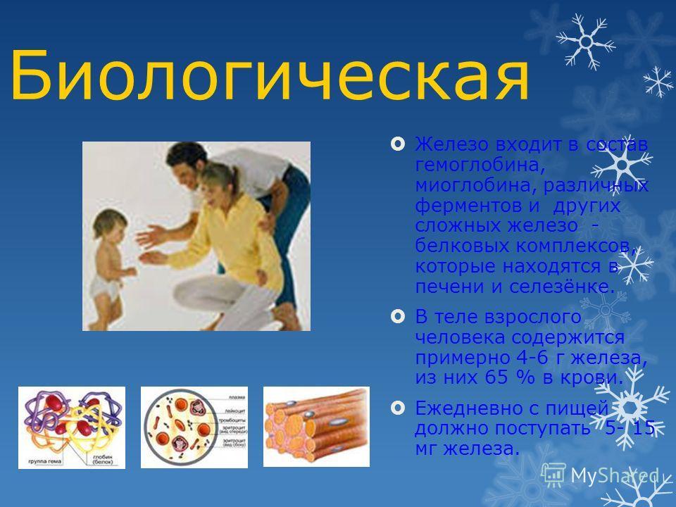 Биологическая Железо входит в состав гемоглобина, миоглобина, различных ферментов и других сложных железо - белковых комплексов, которые находятся в печени и селезёнке. В теле взрослого человека содержится примерно 4-6 г железа, из них 65 % в крови.