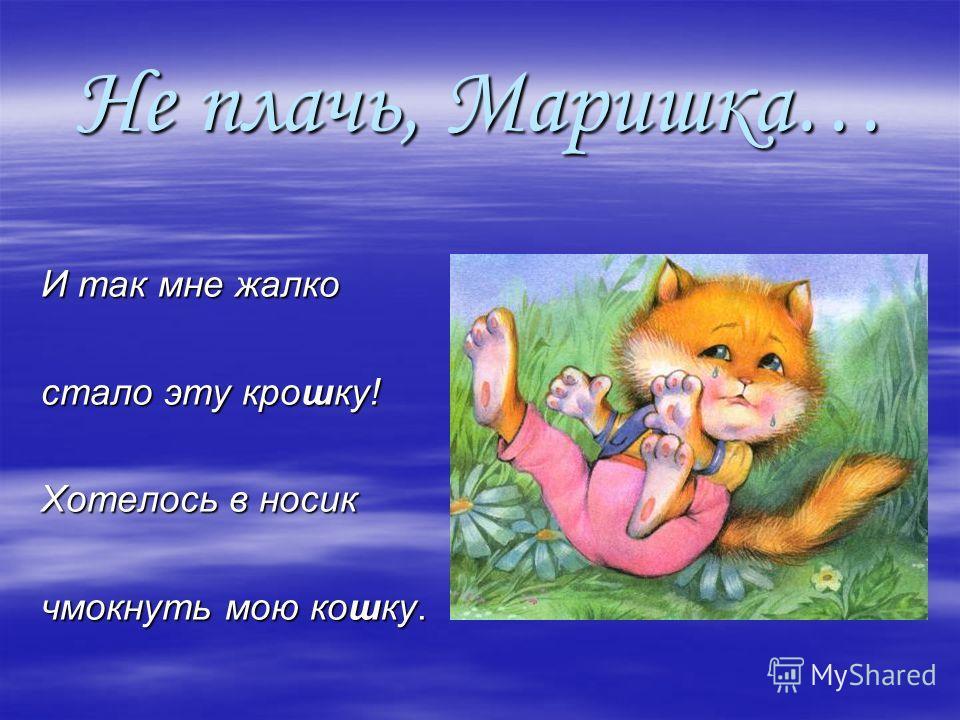 Не плачь, Маришка… И так мне жалко И так мне жалко стало эту крошку! стало эту крошку! Хотелось в носик Хотелось в носик чмокнуть мою кошку. чмокнуть мою кошку.