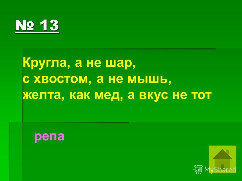13 13 Кругла, а не шар, с хвостом, а не мышь, желта, как мед, а вкус не тот репа