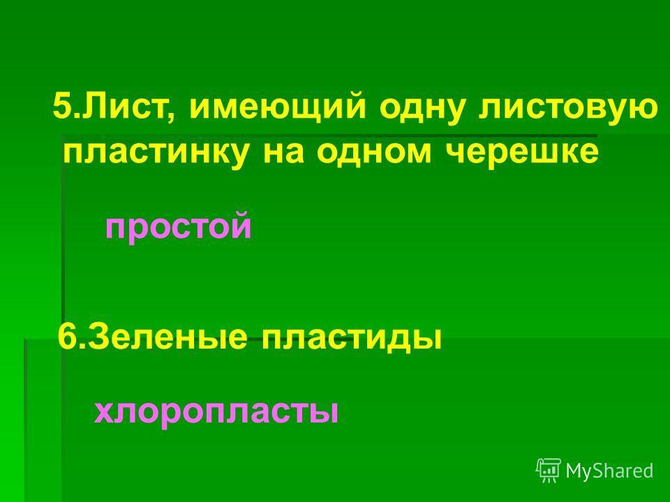 5.Лист, имеющий одну листовую пластинку на одном черешке простой 6.Зеленые пластиды хлоропласты