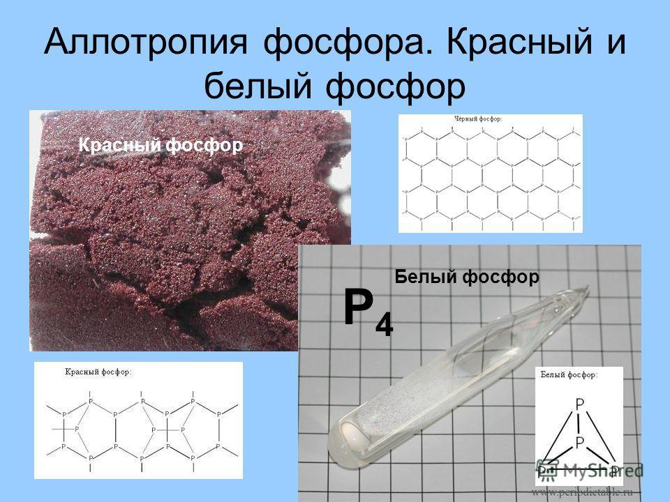 Аллотропия фосфора. Красный и белый фосфор Р4Р4 Белый фосфор Красный фосфор