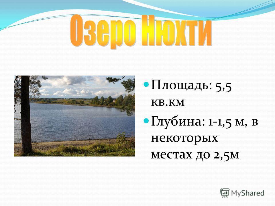 Площадь: 5,5 кв.км Глубина: 1-1,5 м, в некоторых местах до 2,5м
