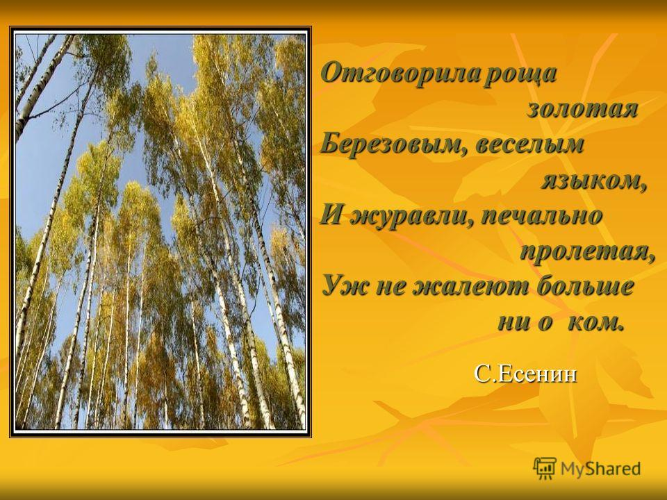 Отговорила роща золотая золотая Березовым, веселым языком, языком, И журавли, печально пролетая, пролетая, Уж не жалеют больше ни о ком. ни о ком. С.Есенин С.Есенин
