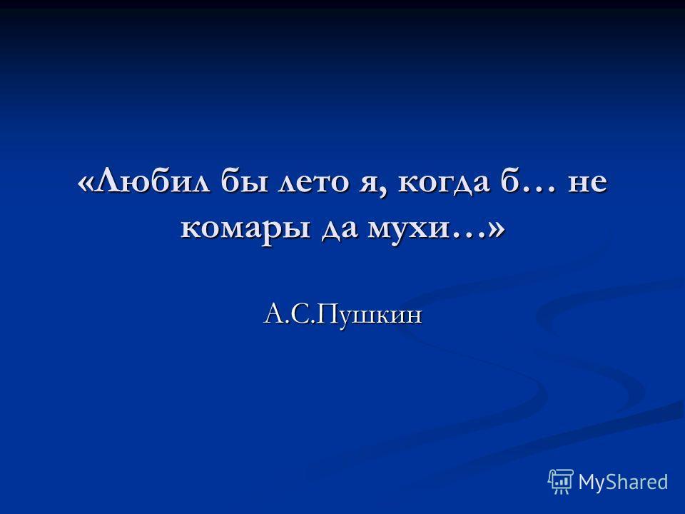 «Любил бы лето я, когда б… не комары да мухи…» А.С.Пушкин