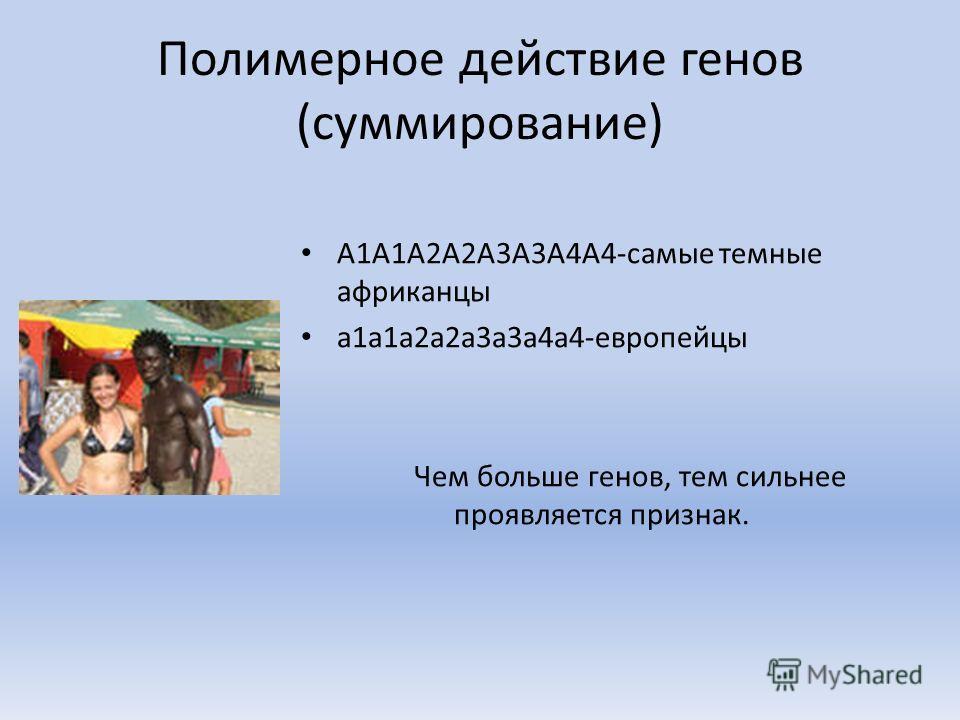 Полимерное действие генов (суммирование) А1А1А2А2А3А3А4А4-самые темные африканцы а1а1а2а2а3а3а4а4-европейцы Чем больше генов, тем сильнее проявляется признак.