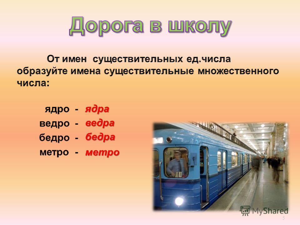 5 ядра ведра бедра метро
