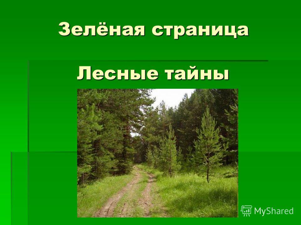 Зелёная страница Лесные тайны