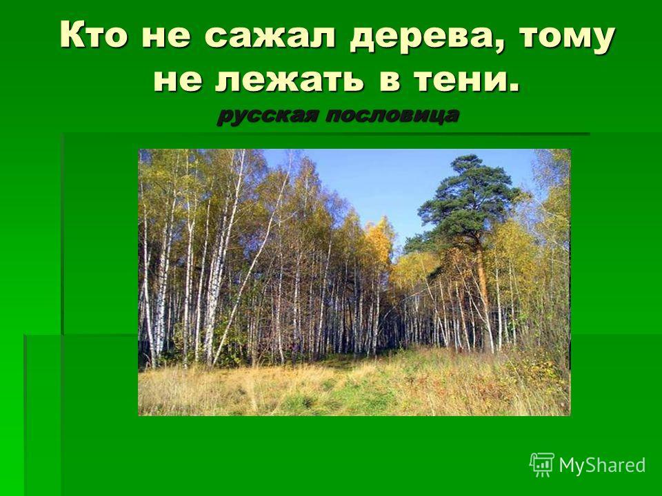 Кто не сажал дерева, тому не лежать в тени. русская пословица