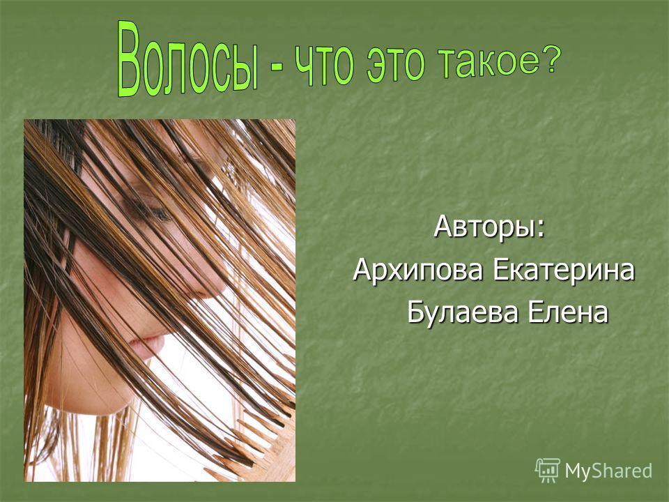 Авторы: Архипова Екатерина Архипова Екатерина Булаева Елена Булаева Елена