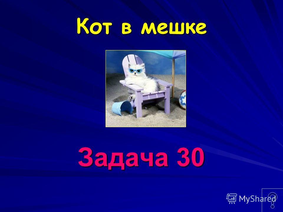 Кот в мешке Задача 30
