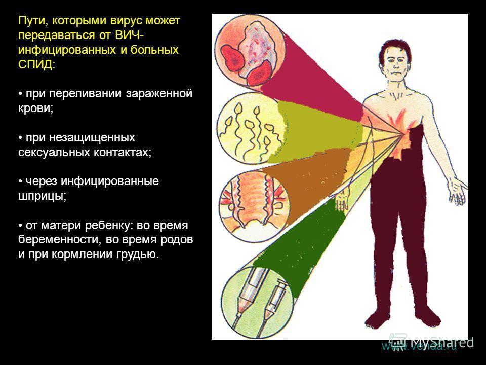 Пути, которыми вирус может передаваться от ВИЧ- инфицированных и больных СПИД: при переливании зараженной крови; при незащищенных сексуальных контактах; через инфицированные шприцы; от матери ребенку: во время беременности, во время родов и при кормл