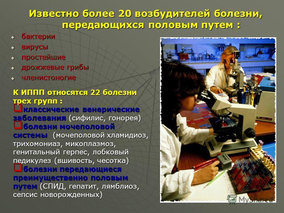 Известно более 20 возбудителей болезни, передающихся половым путем : бактерии бактерии вирусы вирусы простейшие простейшие дрожжевые грибы дрожжевые грибы членистоногие членистоногие К ИППП относятся 22 болезни трех групп : классические венерические