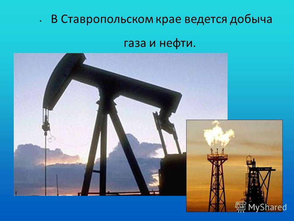 В Ставропольском крае ведется добыча газа и нефти.