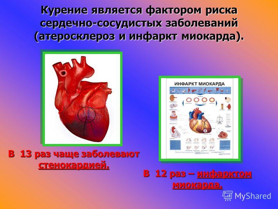 Курение является фактором риска сердечно-сосудистых заболеваний (атеросклероз и инфаркт миокарда). В 13 раз чаще заболевают стенокардией. В 12 раз – инфарктом миокарда.