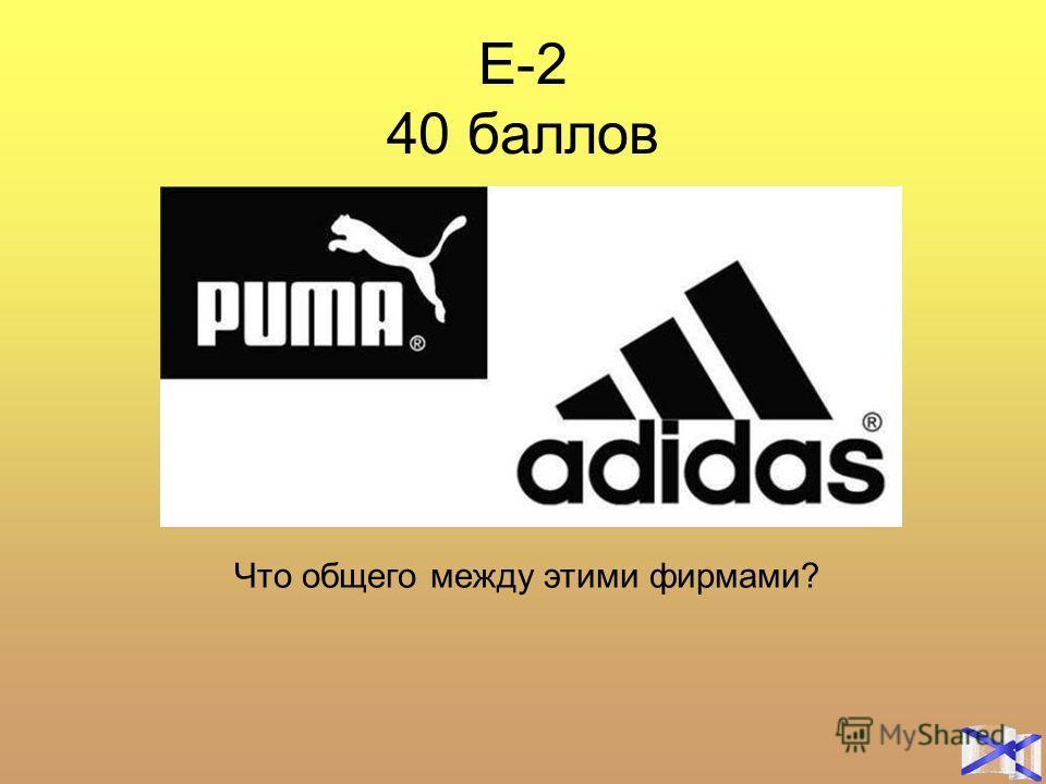 Е-2 40 баллов Что общего между этими фирмами?