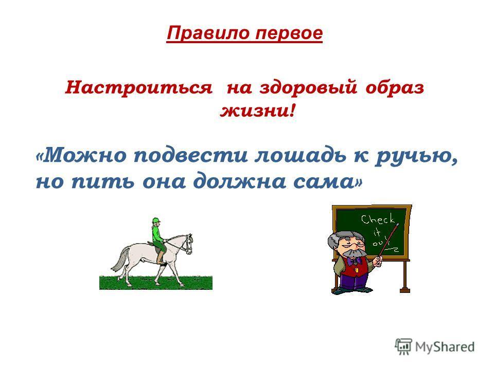 Настроиться на здоровый образ жизни! «Можно подвести лошадь к ручью, но пить она должна сама» Правило первое