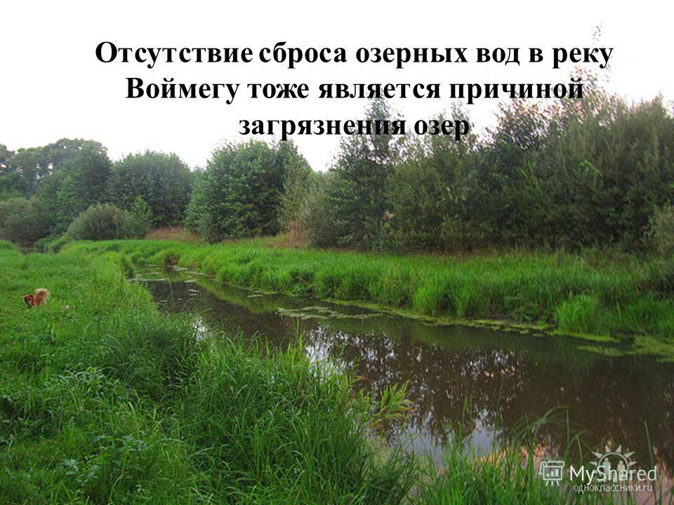Отсутствие сброса озерных вод в реку Воймегу тоже является причиной загрязнения озер
